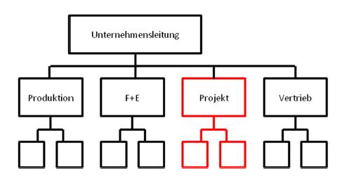 reine projektorganisation